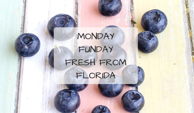 Monday Funday Fresh From Florida