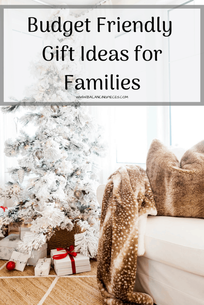 Budget Friendly Gift Ideas for Families